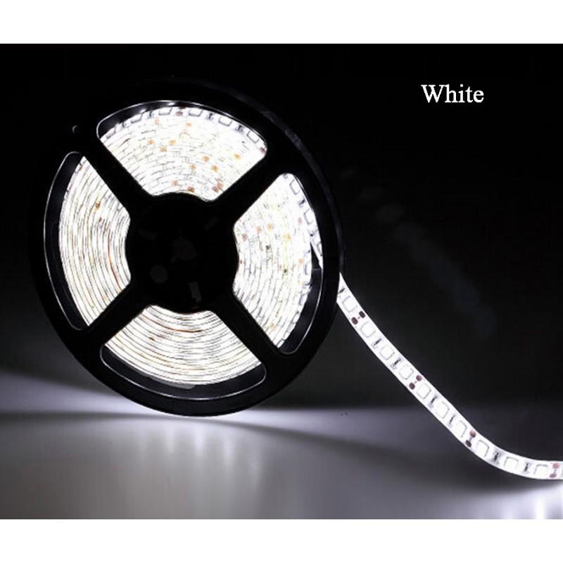 LED pásek 5m sada, studená + zdroj White