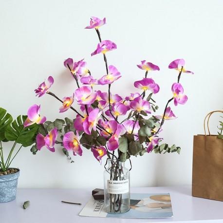 Svítící větvičky orchideje